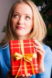 красивейшая женщина подарка рождества Стоковое Фото