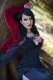 красивейшая женщина портрета корсета Стоковая Фотография RF