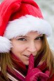 красивейшая женщина портрета рождества стоковое фото rf