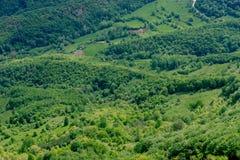 красивейшая зеленая природа Стоковые Фотографии RF