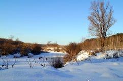 красивейшая зима ландшафта Стоковая Фотография