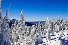 красивейшая зима восхода солнца гор ландшафта Стоковые Фото