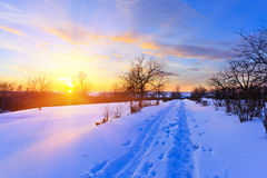 красивейшая зима захода солнца Стоковое Изображение RF