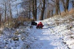 красивейшая зима дня Потеха, игры детей Стоковое Изображение RF