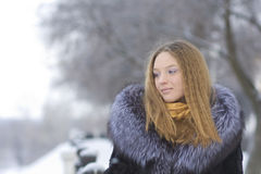 красивейшая зима парка девушки Стоковые Изображения RF