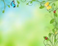 красивейшая конструкция флористическая Стоковое Изображение RF
