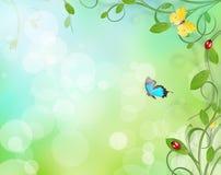красивейшая конструкция флористическая Стоковые Фотографии RF