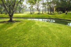 красивейшая лужайка Стоковые Изображения RF