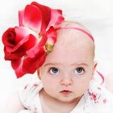 красивейшая милая девушка цветка немногая Стоковые Фото