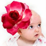 красивейшая милая девушка цветка немногая Стоковые Изображения