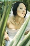 красивейшая невеста Стоковые Изображения RF