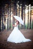 Красивейшая невеста Стоковое Изображение