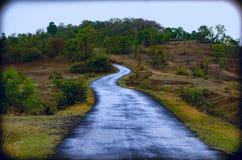 красивейшая дорога Стоковое Фото