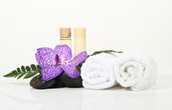 Красивейшая орхидея Стоковые Изображения