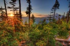 красивейшая перспектива Орегона США держателя клобука Стоковые Изображения RF