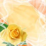 Красивейшая предпосылка венчания Стоковая Фотография RF