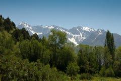красивейшая природа горы kazakhstan Стоковые Фотографии RF
