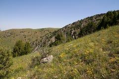 красивейшая природа горы kazakhstan Стоковое фото RF
