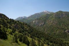 красивейшая природа горы kazakhstan Стоковая Фотография RF