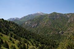 красивейшая природа горы kazakhstan Стоковые Фото