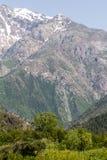 красивейшая природа горы kazakhstan Стоковое Фото
