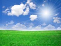 красивейшая природа зеленого цвета поля Стоковое Изображение RF