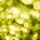 красивейшая природа зеленого цвета bokeh Стоковые Фотографии RF