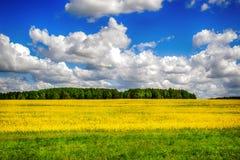 красивейшая природа ландшафта Стоковые Изображения