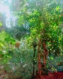 красивейшая природа Стоковые Изображения