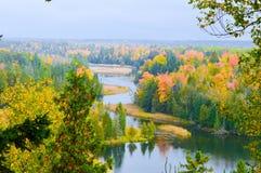 Красивейшая пуща в осени Стоковое Изображение