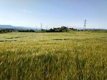 красивейшая сельская местность стоковое фото rf