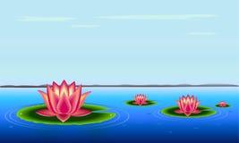 красивейшая тишь озера Стоковое Фото