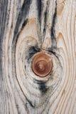 красивейшая узловатая древесина текстуры Стоковые Фотографии RF