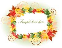 красивейшая флористическая рамка пестротканая Стоковые Фото