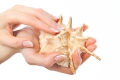 красивейшая французская раковина manicure руки Стоковое Изображение RF