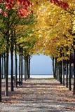 Красивейшая цветастая осень Стоковое фото RF