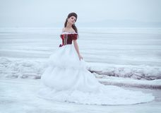 Красивейшее брюнет в платье Стоковые Фото