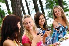 красивейшее выпивая вино группы девушок Стоковое Изображение