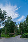 Красивейшее голубое небо с облаками Стоковые Изображения RF