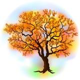 Красивейшее дерево осени иллюстрация штока