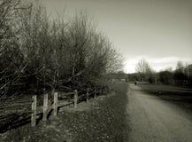 красивейшее лето дороги дня сельской местности стоковое фото rf
