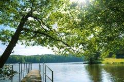красивейшее лето пейзажа иллюстрации 3d Стоковое фото RF