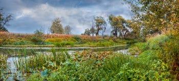 красивейшее лето реки природы изображения Стоковая Фотография RF