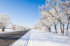 Красивейшее изображение зимы landscape стоковое фото