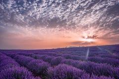 Красивейшее изображение поля лаванды Ландшафт восхода солнца лета, сравнивая цвета Красивые облака, драматическое небо Стоковая Фотография