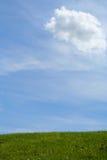 красивейшее лето дня Стоковые Фотографии RF