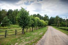 красивейшее лето дороги дня сельской местности стоковое изображение