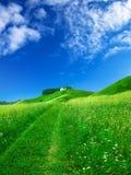 красивейшее лето ландшафта Стоковое фото RF
