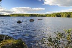 красивейшее лето природы озера стоковая фотография rf