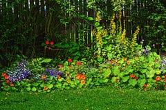 красивейшее лето сада Стоковое фото RF
